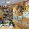 店内にお花と植物を増やしました。