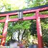 文京つつじ祭り2017最終日 根津神社つつじは5月中旬まで楽しめそう 5月5日(金)2017年