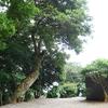 an one お寺の中にある糸島の服屋さん