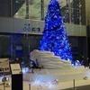 東京丸の内クリスマス「丸の内oazo(オアゾ)」🎄Marunouchi Bright Christmas2020🎄