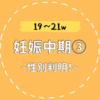 【19〜21w/妊娠中期③】性別判明!リモートで家族に報告
