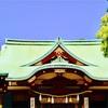 亀戸天神社の藤まつりに行ってきました!