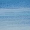 春の沖縄! その④ ~波の上ビーチ・波の上うみそら公園~【徒然日記・旅行記】