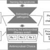 医師の抗菌薬治療選択の背景にある治療的推論の探索的研究