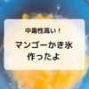 【これは絶品!】マンゴ―かき氷を作ったよ!