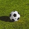 【全国高校サッカー】本日高校サッカー決勝を観戦!良い試合すぎて大興奮!#261点目