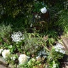ホワイトガーデンに花植える