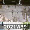 ワクチン接種と学園戦記ムリョウ(2021W39)