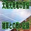 太陽光発電の苦悩!雑草との戦い記録