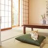 ユーレックスのオイルヒーターは安心の日本製!緩やかな暖かさが魅力の逸品