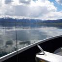 釣りが好き!