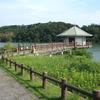 ブンブンブン♫ 山田池~♫