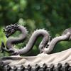 人の心の中には龍が棲んでいる件