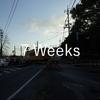 ブログを書き始めて7週間たった!PV数と感じたこと、そして変化