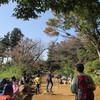 高尾の紅葉と津久井山ユリ園(3)もみじ台から城山へ。
