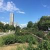 札幌大通り公園 7月最後の日 2020