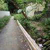 松の川緑道(日吉にある学問の道?)