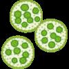 藻の汁のはじめてのブログ