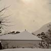 雪の函館公園…