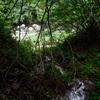 出水後の渓流(2) 秋の朝