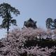 PENTAX K-3で桜「金沢城菱櫓」