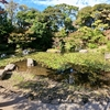 野毛山公園の池(仮称)(神奈川県横浜)