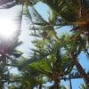 初めてのハワイ島★其の一