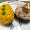 神楽坂で無農薬玄米おむすびをテイクアウト【ボタニカルビーチ】はオーガニック食材にこだわるヘルシーカフェ!
