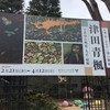 練馬区立美術館へ『津田青楓展』を見にいく(3月7日)。