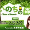 「いのちの森 VOICE OF FOREST」