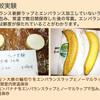 食材の保存期間を劇的に伸ばすビニール袋が6枚1000円以下