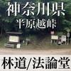 【動画】神奈川県 南山林道/法輪堂林道