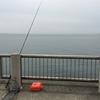 新舞子マリンパークで釣り修行。釣れないのが普通だと地元の方から教えていただく