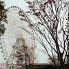 雨、横浜。