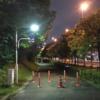 2021年06月13日クソ散歩 ~夜に散歩~