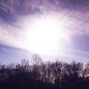 【一日一枚写真】冬の野幌森林公園 Part.7【スマホ】
