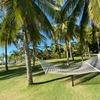 フィリピン ボホール⑧  〜最高に心地よいリゾートⅠ Bohol Beach Club~