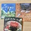 【小学1年生】おすすめ生きもの写真絵本3冊。