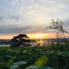 富山県 黒部市 どやまらんど明日キャンプ場の紹介 高台からの夕焼けは絶景。テント泊のお値段格安で近所に温泉施設あり