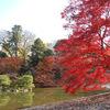 庭園8 仙洞御所 小堀遠州の名残を残す庭園