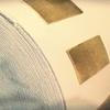 千手柱間の巻き物/NARUTO-ナルト- 疾風伝