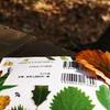 【樹木図鑑 おすすめ 後編】外に持ち出しやすく、検索しやすい樹木図鑑をご紹介