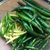 唐辛子、トマト収穫、リンドウ、カトレアの花
