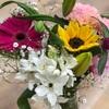 お花が咲きました🌼
