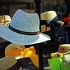 麦わら帽子は冬に買え!冬野菜高騰に備える法