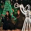 輝くツリー、近づく聖夜 熊本市のルーテル学院でイルミ点灯