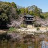 勧修寺(かじゅうじ)