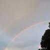 Wの虹と枝豆