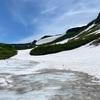 【新しい山の楽しみ方】北海道・大雪山での登山道整備体験 #4 近自然工法は汎用性を有するか