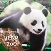 「夏の夜の上野動物園」で、初めてのシャンシャン